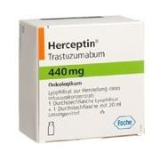 Herceptin ( трастузумаб )